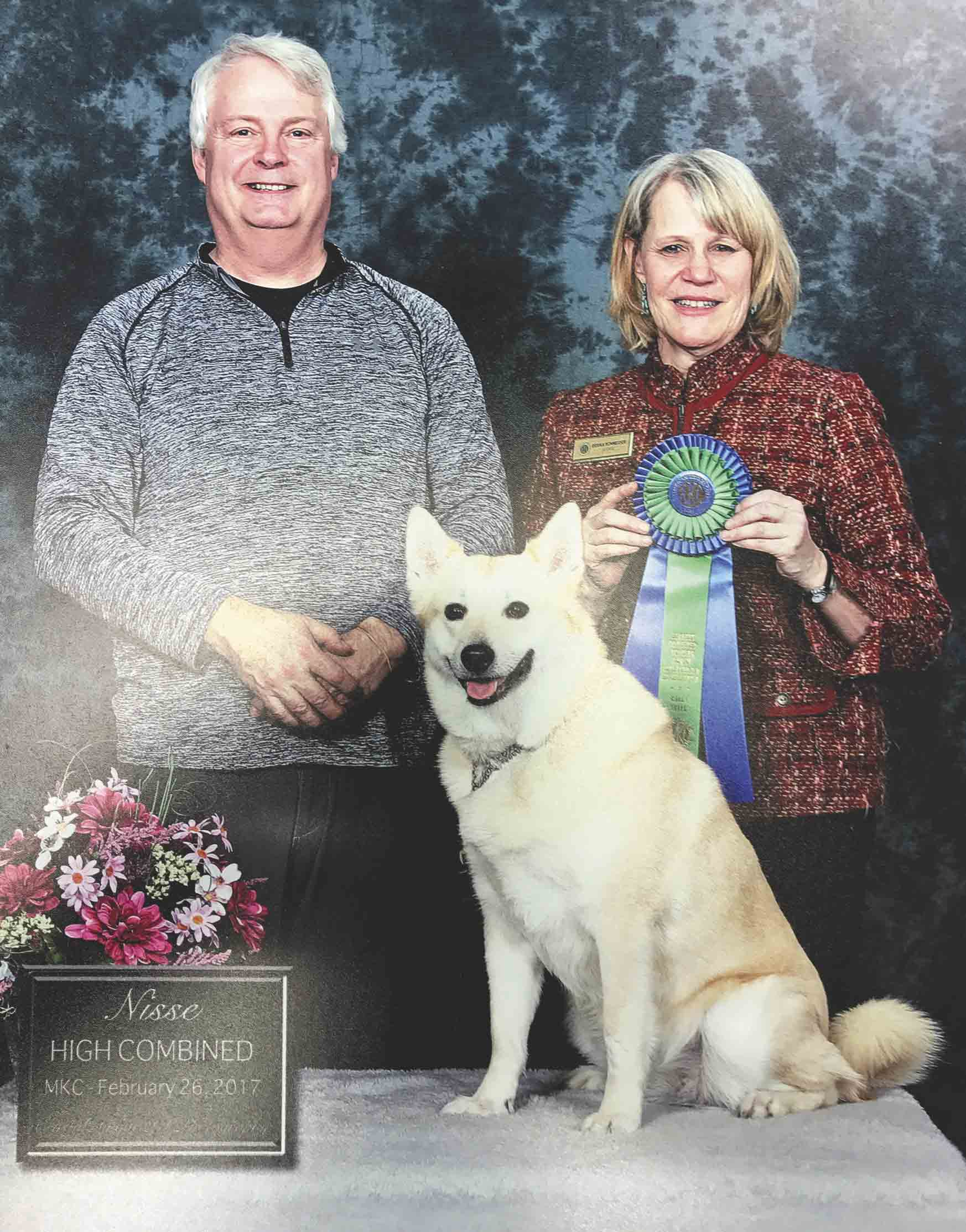 Mike Woodson's dog, Nisse, received the High Combined award at a dog show on Feb. 26, 2017. Nisse is the first Norwegian buhund to receive this distinction in the United States. Woodson shows Nisse and four other dogs at show competitions across the Midwest. It is a hobby he takes...